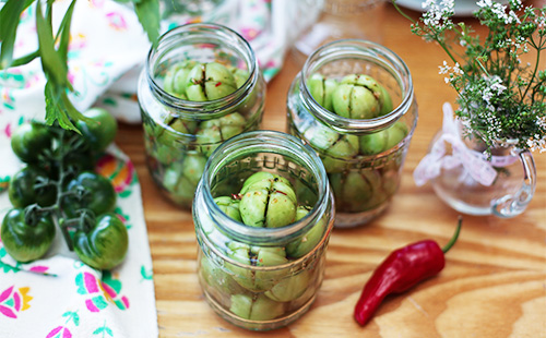 Stuffed green tomatoes in jars